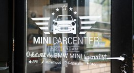 service-diagnose-mini-carcenter-rotterdam.jpg